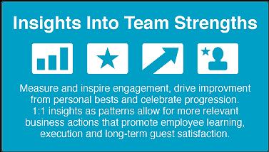 inside into team strengths