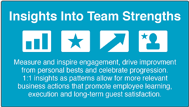 inside into team strengths